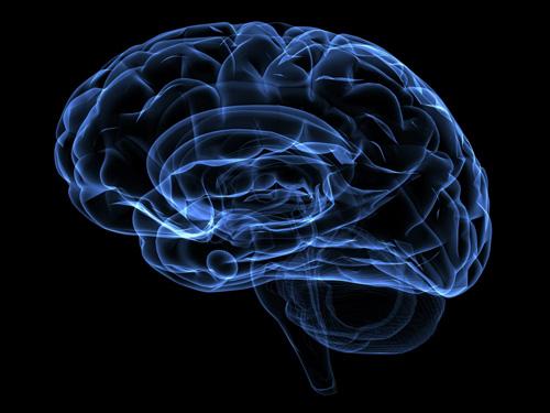 جراحی زیبایی مغز